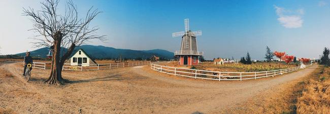 Phim trường Thuận Phước Field