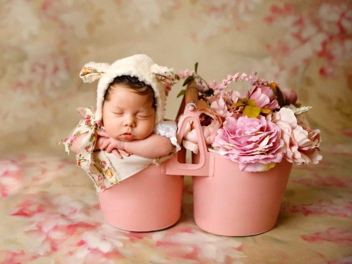 chụp hình cho baby mới ra đời với Lavender