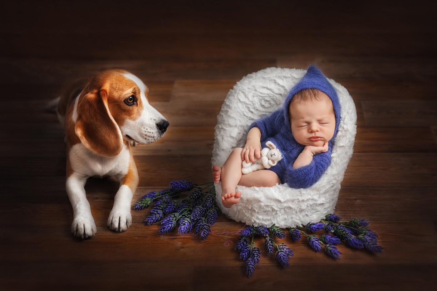 Chụp ảnh new born tại nhà cho bé đẹp
