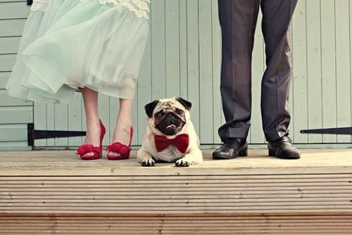 báo giá chụp hình cưới