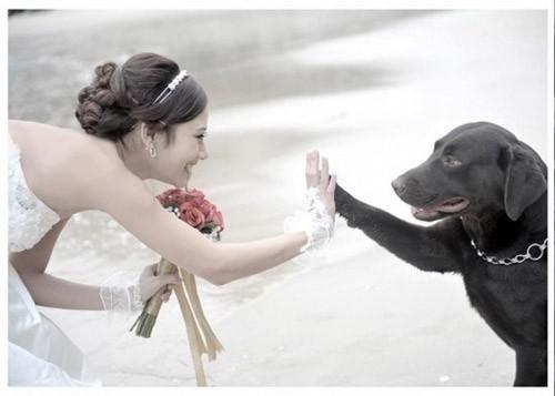 chụp ảnh cưới đẹp