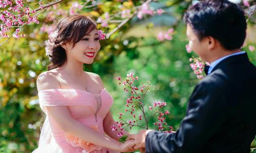 chụp hình cưới hoa anh đào