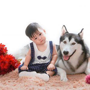 Chụp ảnh bé với động vật