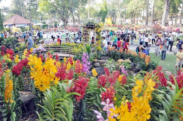 chụp hình Tết 2021 tại công viên Tao Đàn