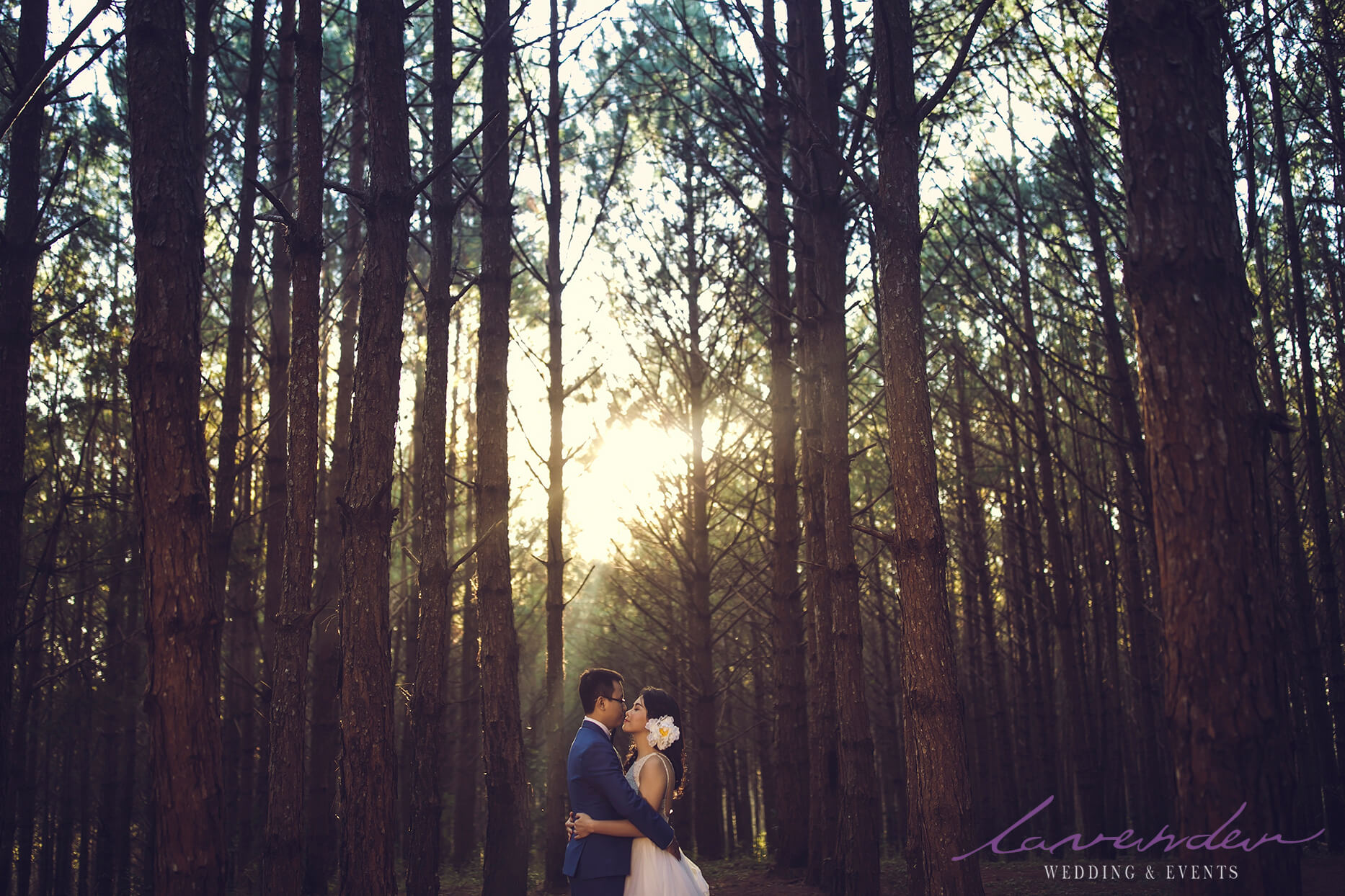 dịch vụ chụp ảnh cưới rẻ và đẹp ở tp Đà lạt
