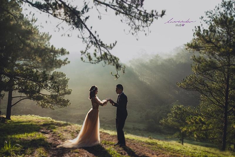 vì sao nên chụp ảnh cưới tại đà lạt dịp cuối năm